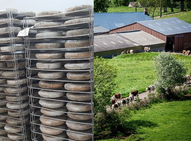 Diptyque cave d'affinement de fromage et exploitation