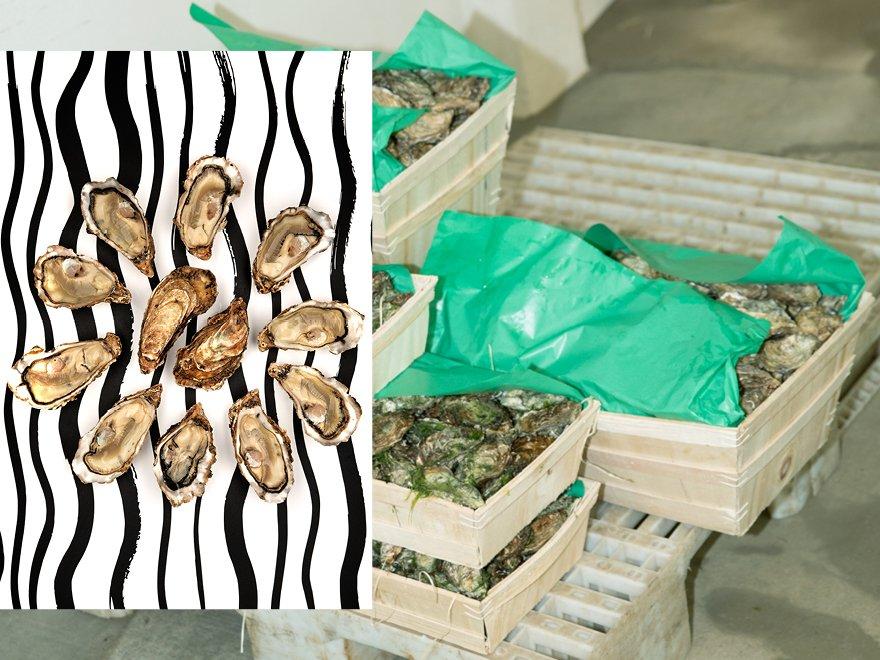 Bourriches d'huîtres naturelles