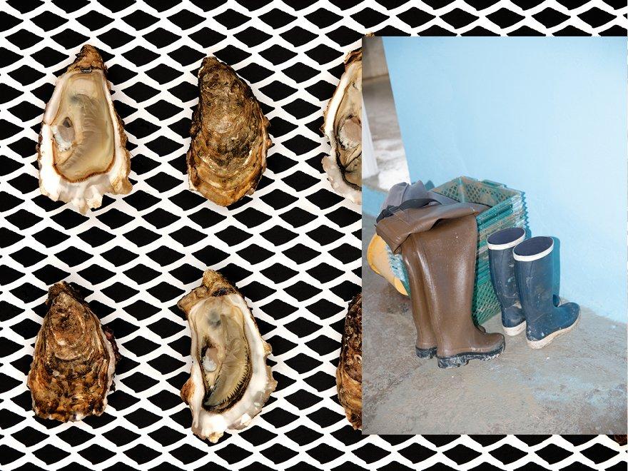 Huîtres naturelles Île d'Oléron