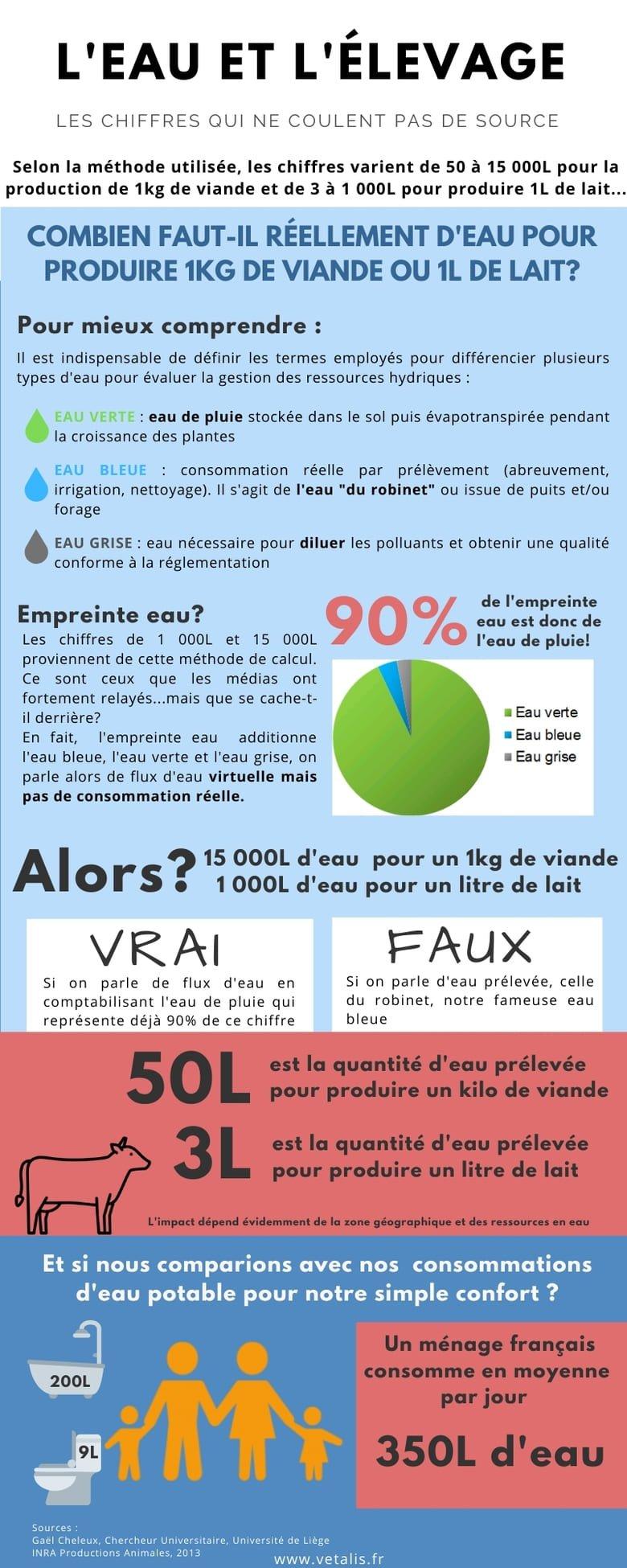 Infographie sur la consommation d'eau des vaches en élevage