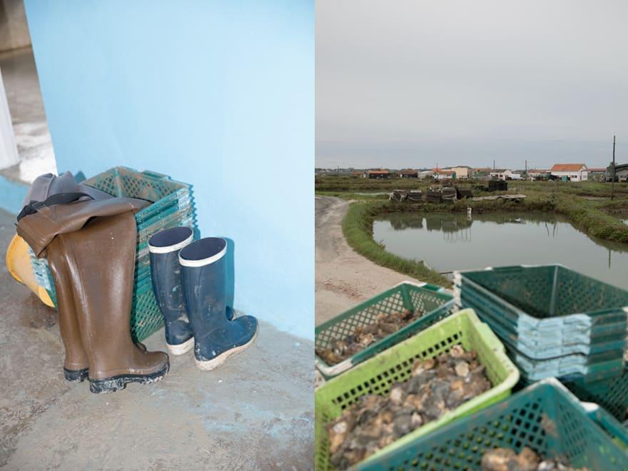 Pêche aux huîtres naturelles Thomas Archambeau