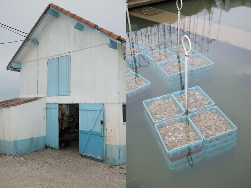 Stockage et expédition des huîtres Archambeau