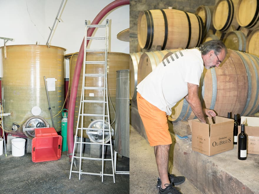 Mise en carton bouteilles de vin Domaine Olibrius